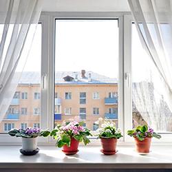 Окна из дерева и ПВХ в Борисове Фото